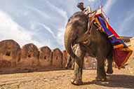 Jaipur, ruta por la ciudad rosa